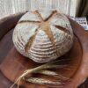 有機スペルト小麦100%